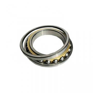 BEARINGS LIMITED SS6004-ZZ Ball Bearings